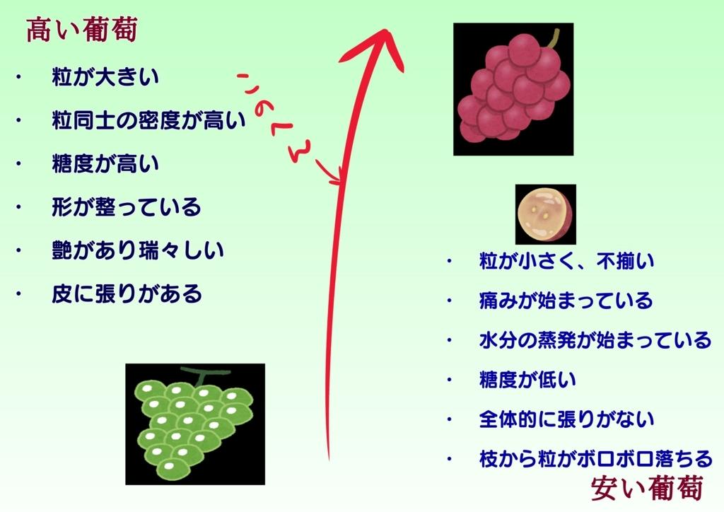f:id:kataseumi:20180821003808j:plain