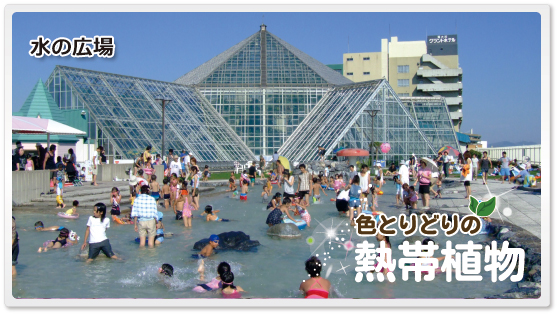 f:id:kataseumi:20180830204916p:plain