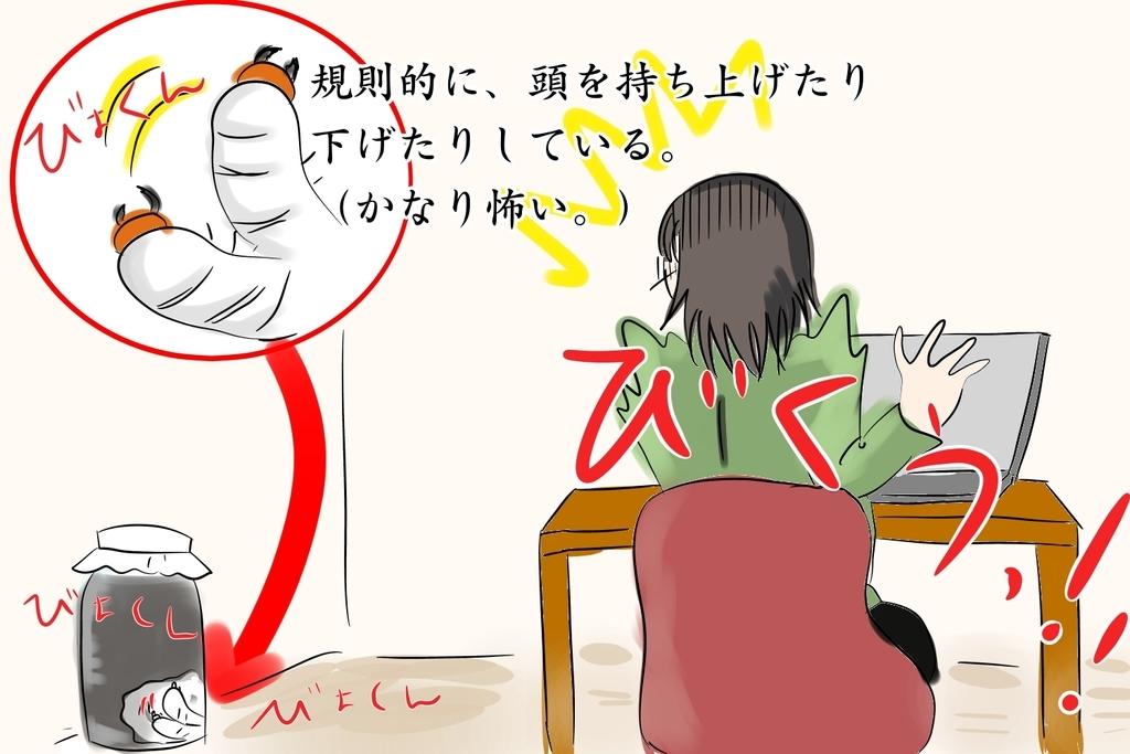 f:id:kataseumi:20180926191052j:plain