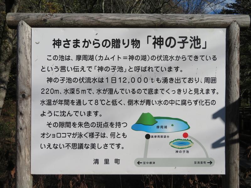 f:id:kataseumi:20181029013721j:plain