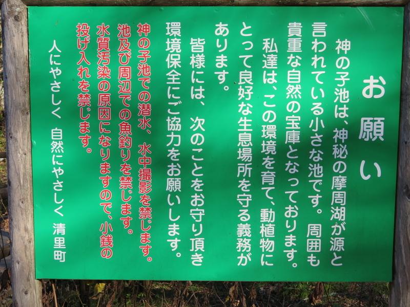 f:id:kataseumi:20181029013723j:plain