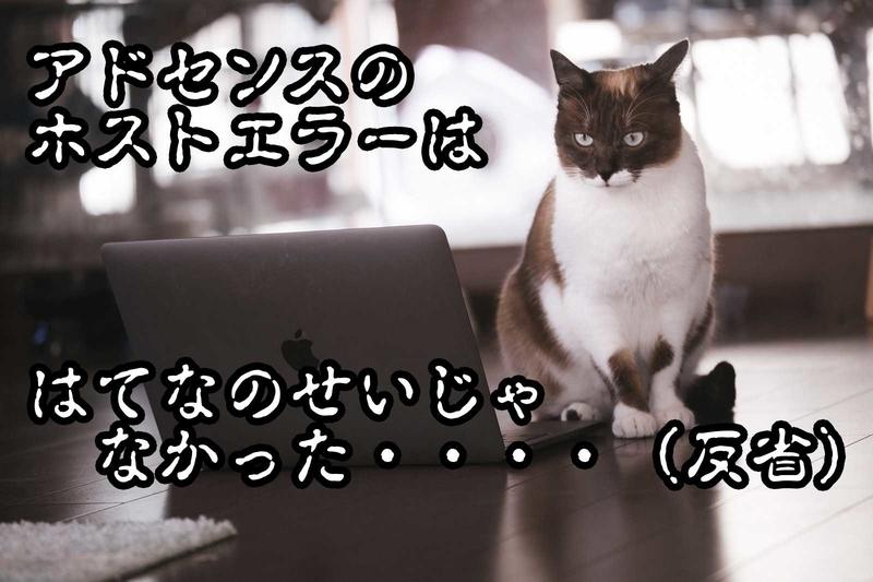 f:id:kataseumi:20190202173421j:plain