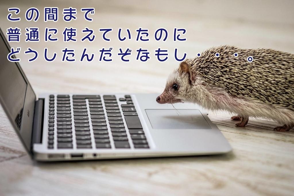 f:id:kataseumi:20190217181803j:plain