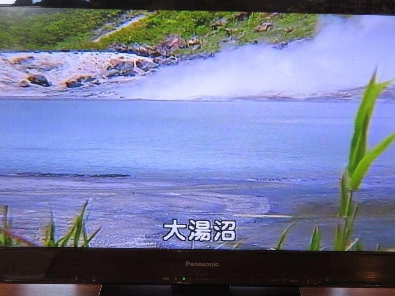 f:id:kataseumi:20190310202746j:plain