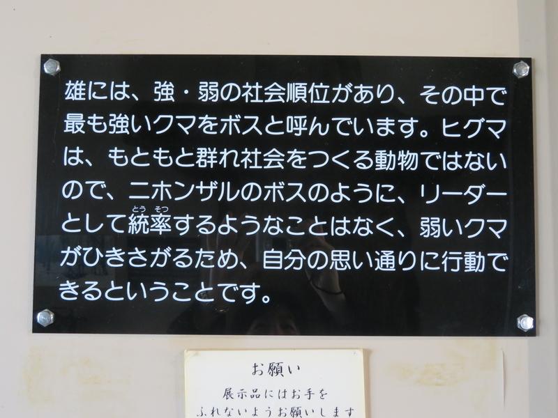 f:id:kataseumi:20190311013921j:plain