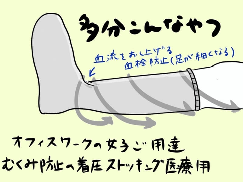 f:id:kataseumi:20190319203030j:plain