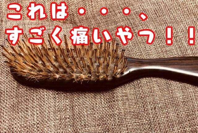 f:id:kataseumi:20190319232146j:plain