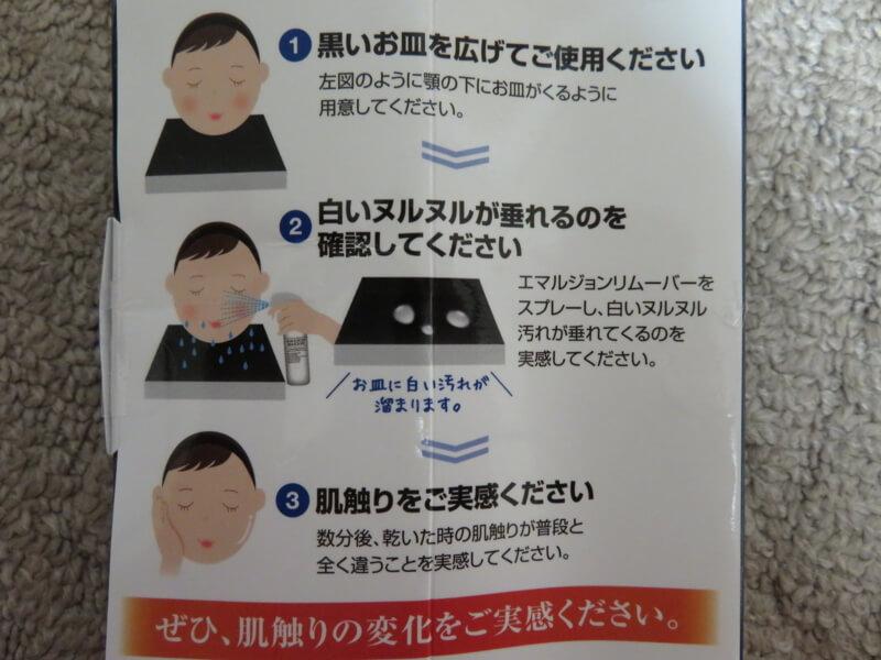 f:id:kataseumi:20190319232154j:plain
