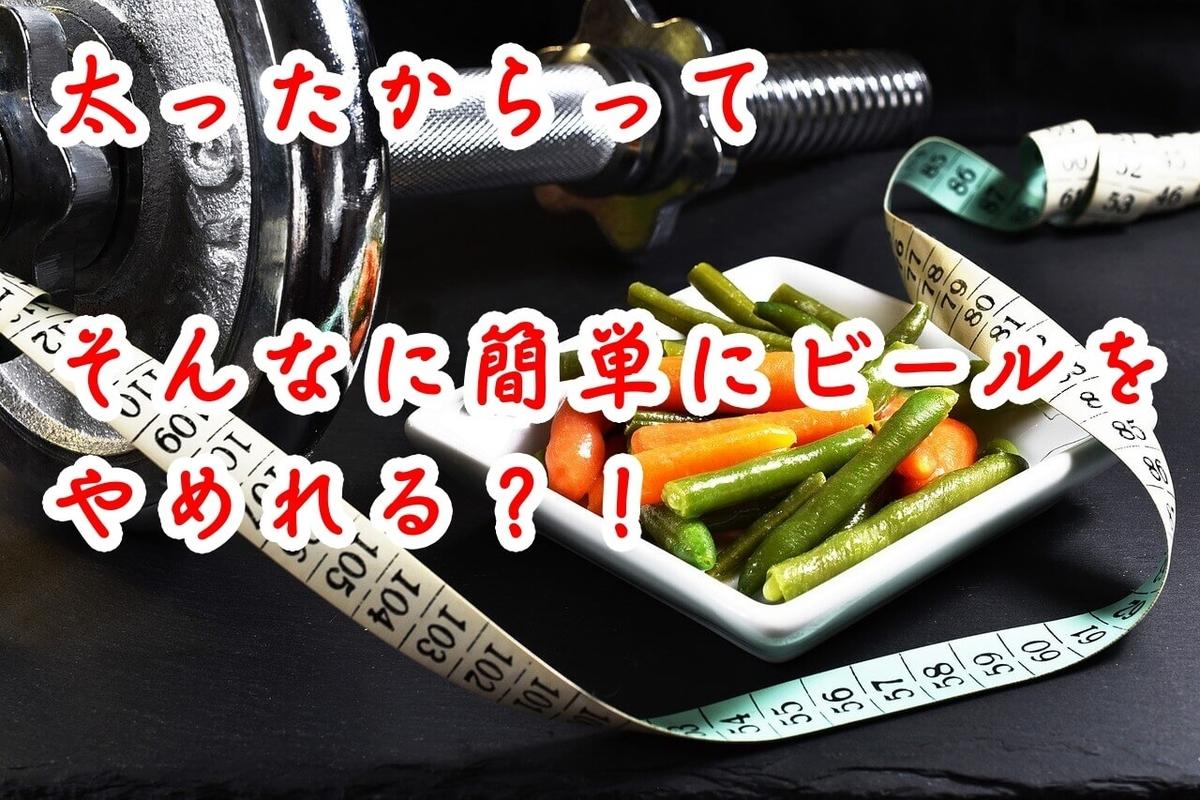 f:id:kataseumi:20190422010906j:plain