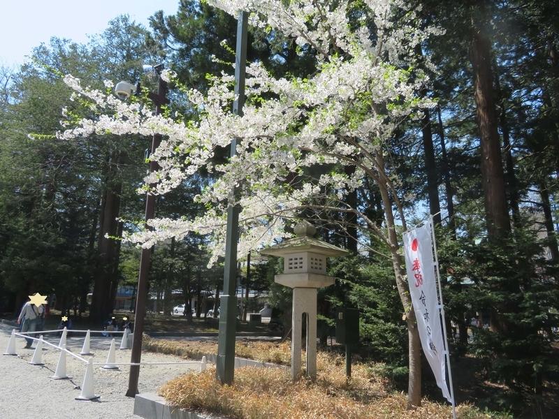 f:id:kataseumi:20190506000101j:plain