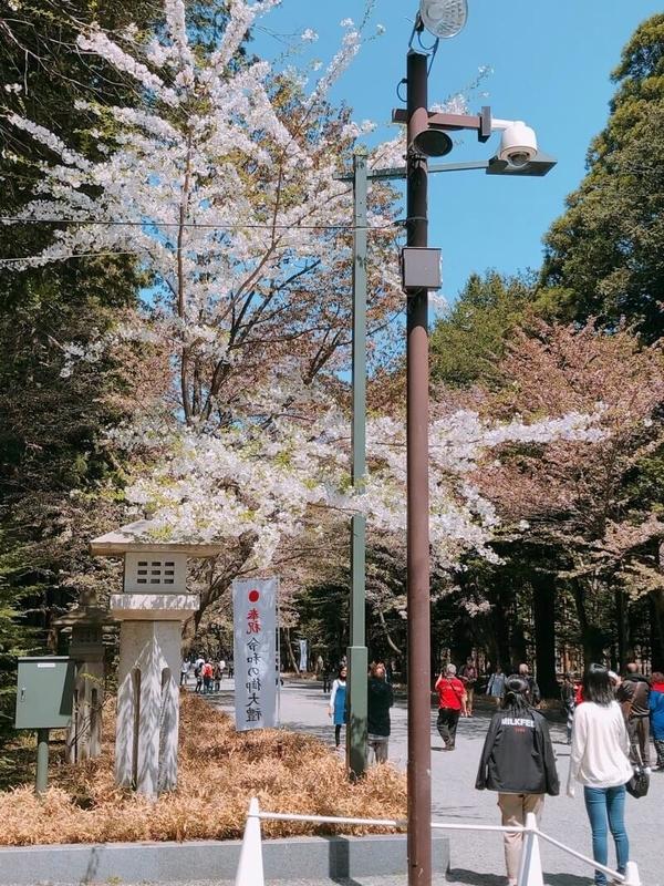 f:id:kataseumi:20190506150131j:plain