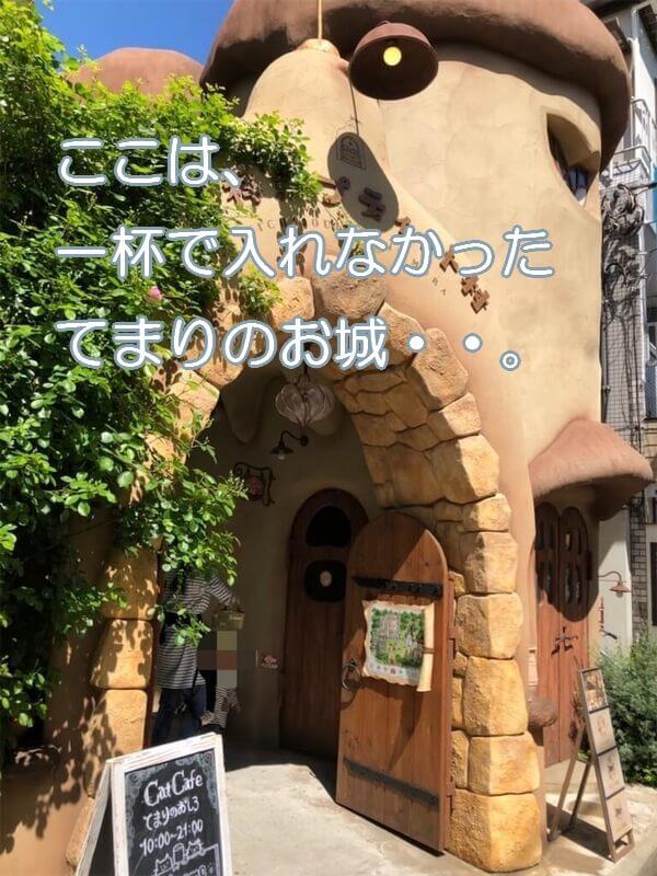 吉祥寺てまりのお城写真