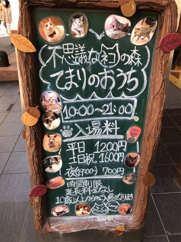 f:id:kataseumi:20190509183126j:plain