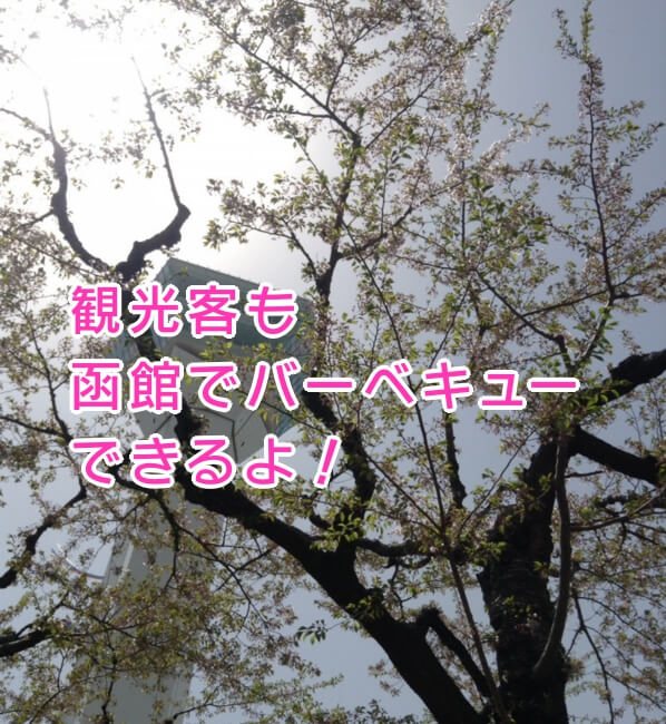 f:id:kataseumi:20190926214106j:plain