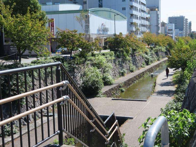 ルビノ京都堀川前の堀川写真