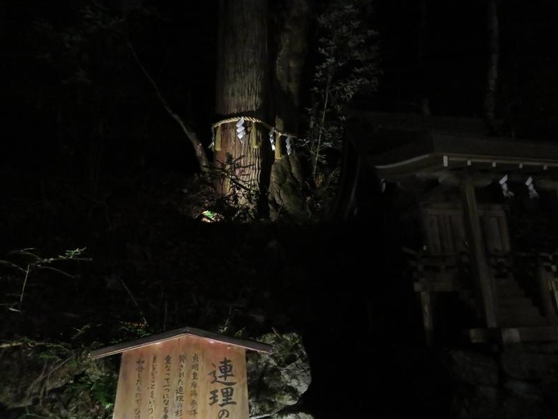 f:id:kataseumi:20191104221552j:plain