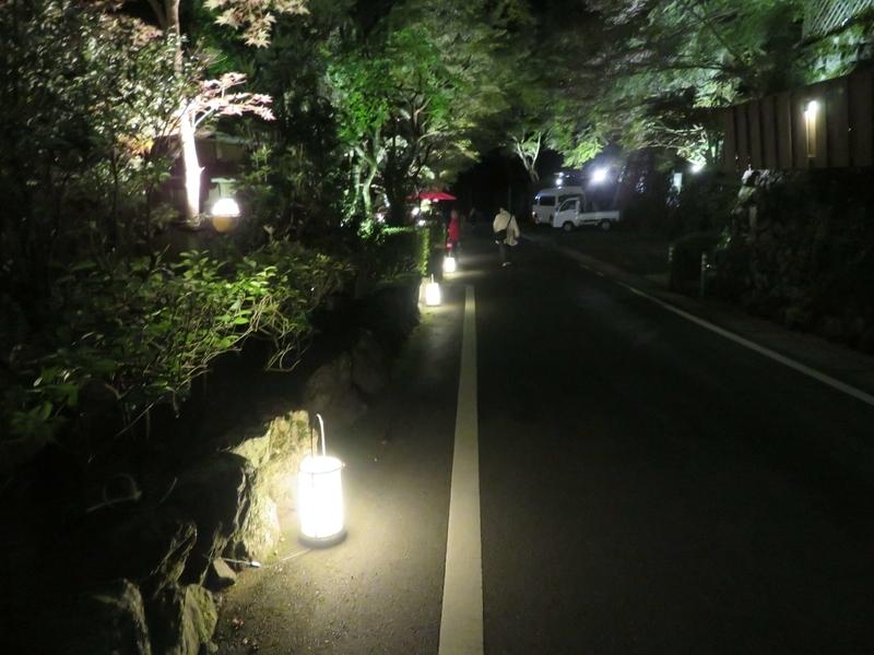 f:id:kataseumi:20191104221907j:plain