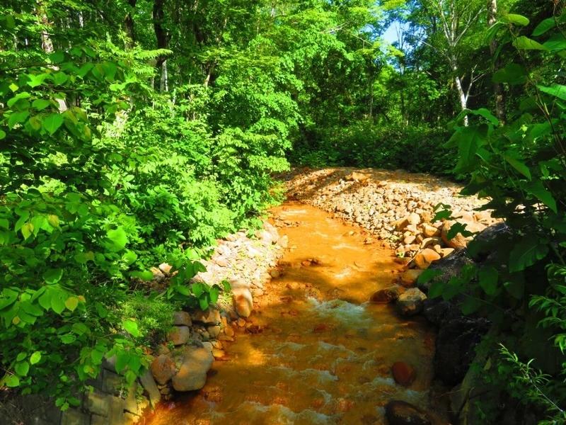 大滝ナイアガラの滝途中にある、小川の写真