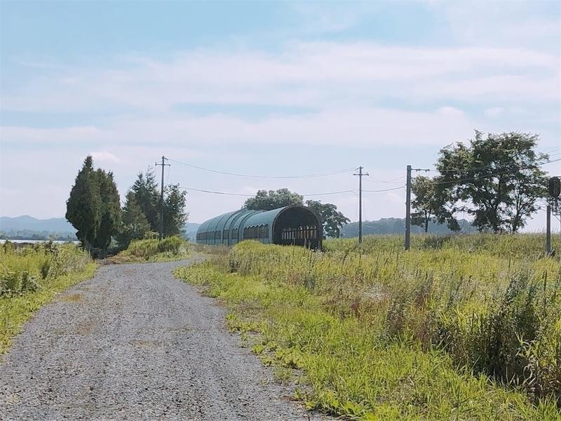 東追分駅の名残を残すスノーシェルター写真
