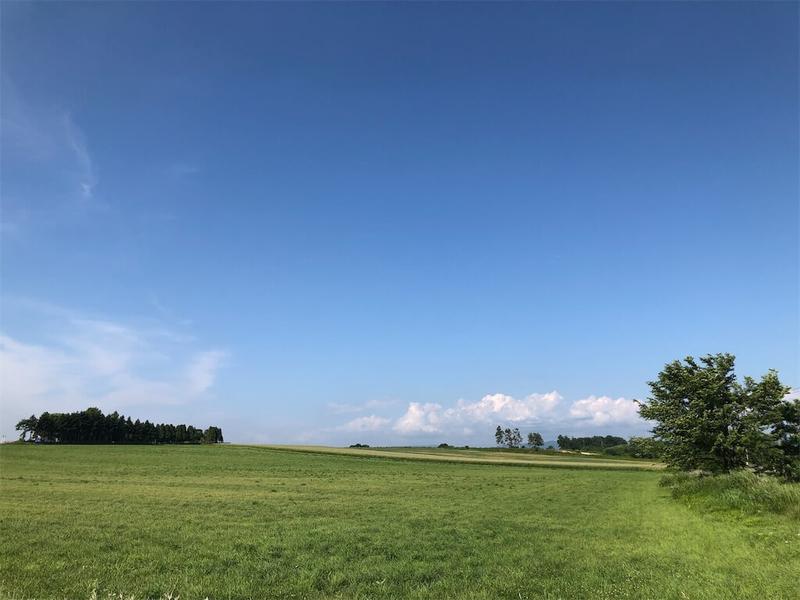 東丘通り踏切から眺める田園風景の写真