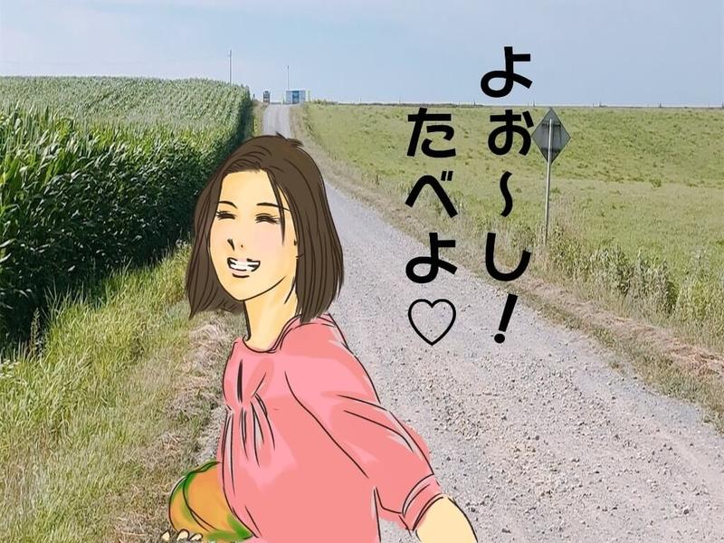 f:id:kataseumi:20200802221145j:plain