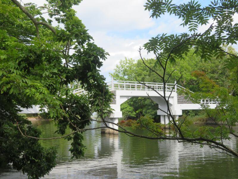 大沼にかかる橋の写真