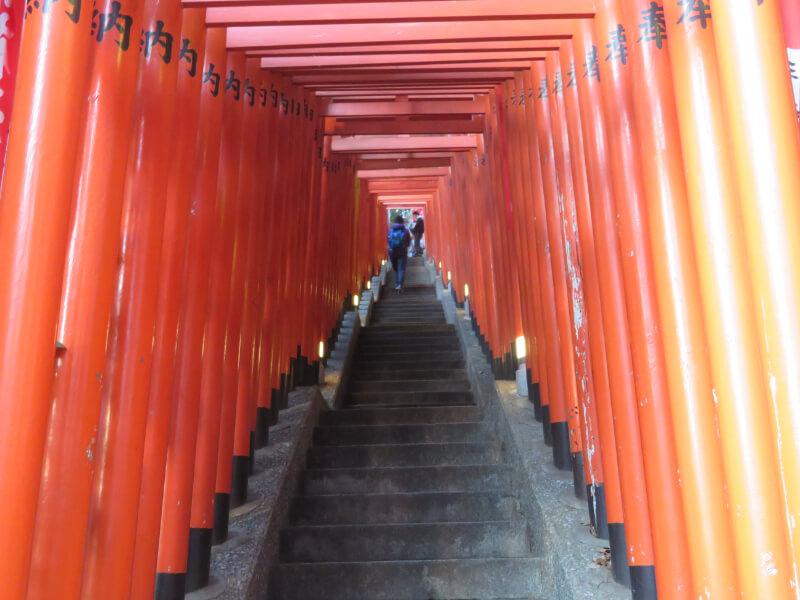 日枝神社の千本鳥居を下から見た写真