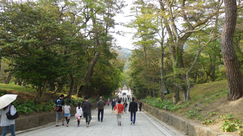 f:id:katayama-lawoffice:20140429215348j:image:w640