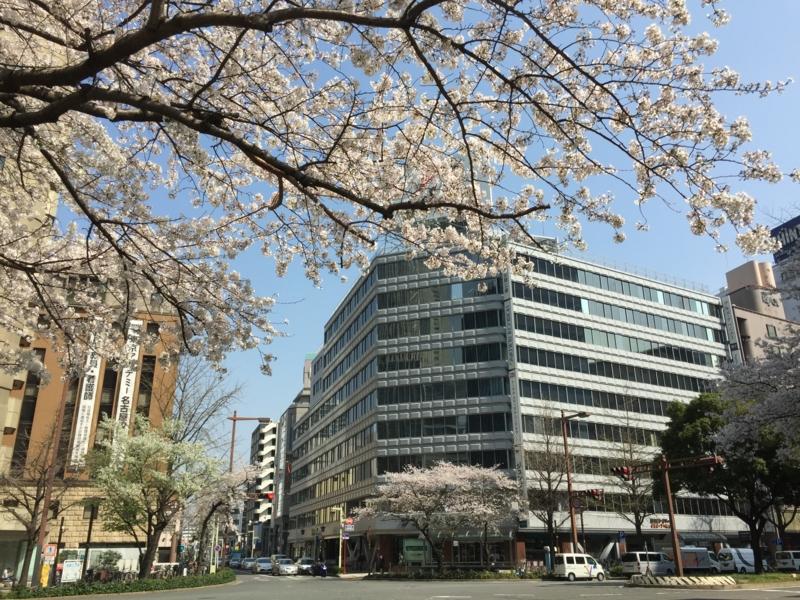f:id:katayama-lawoffice:20150331232321j:image:w640