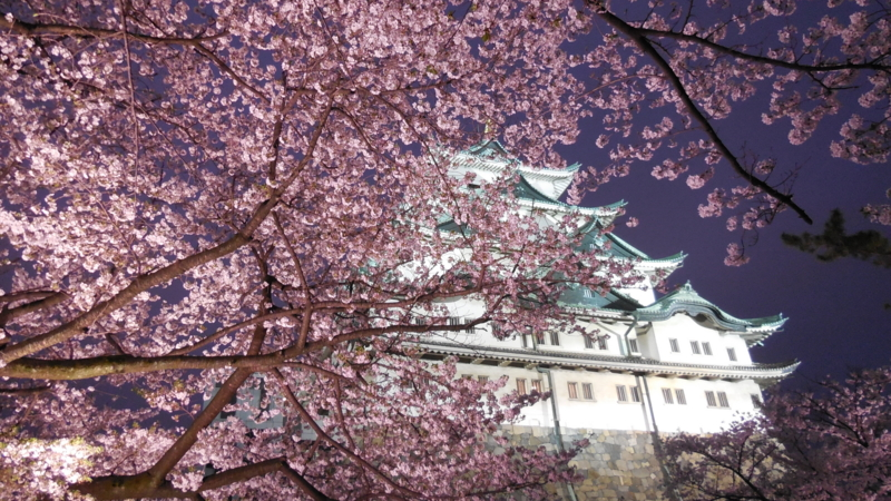 f:id:katayama-lawoffice:20150403111103j:image