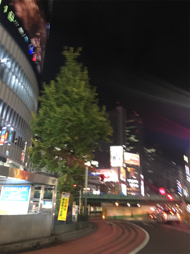 f:id:katayamasayuri:20181206232320j:image