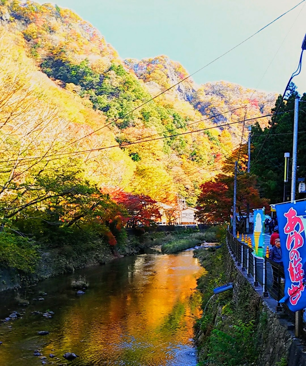 f:id:katayoku_no_hito:20171112105541j:plain