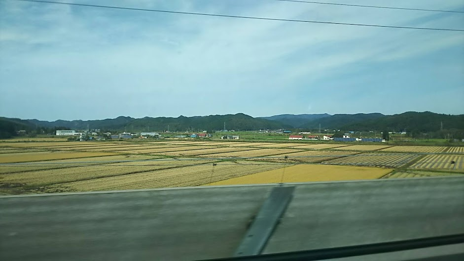 f:id:katayoku_no_hito:20181008221044j:plain