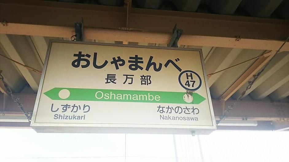 f:id:katayoku_no_hito:20181009011837j:plain