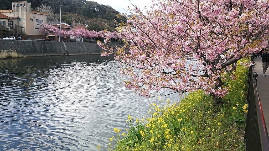 f:id:katayoku_no_hito:20190214231931j:plain