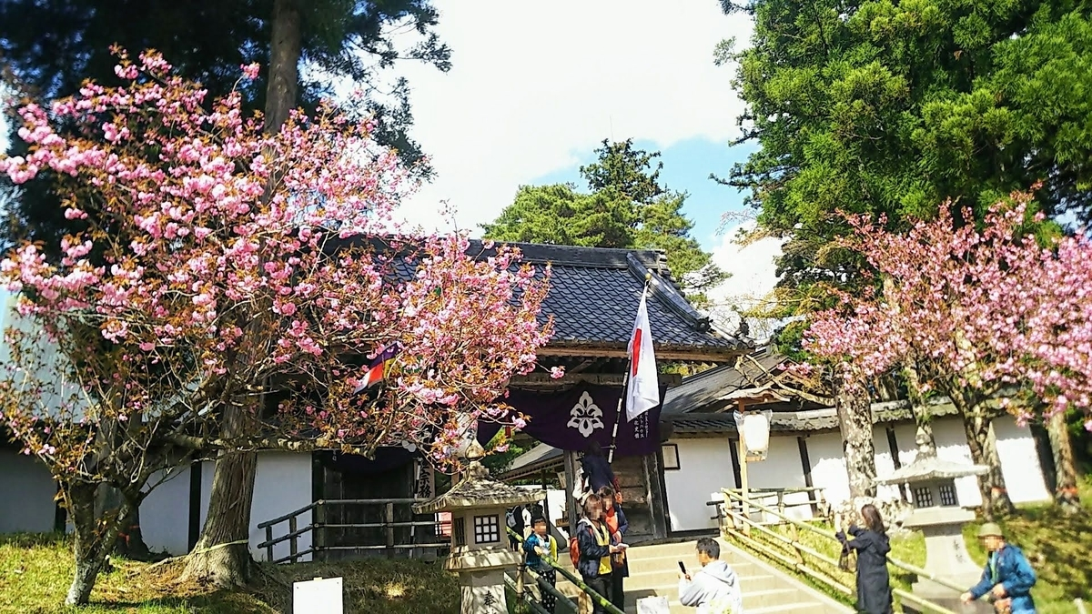 f:id:katayoku_no_hito:20190516233726j:plain