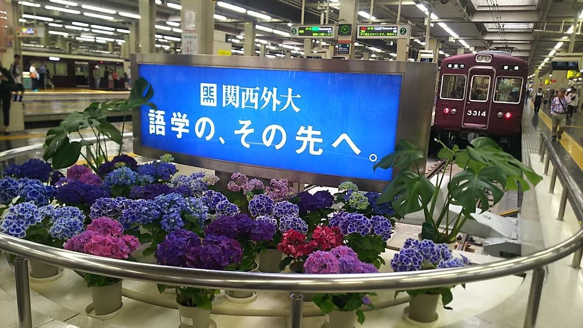 f:id:katayoku_no_hito:20190616100501j:plain