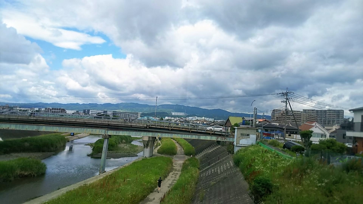 f:id:katayoku_no_hito:20190616104952j:plain