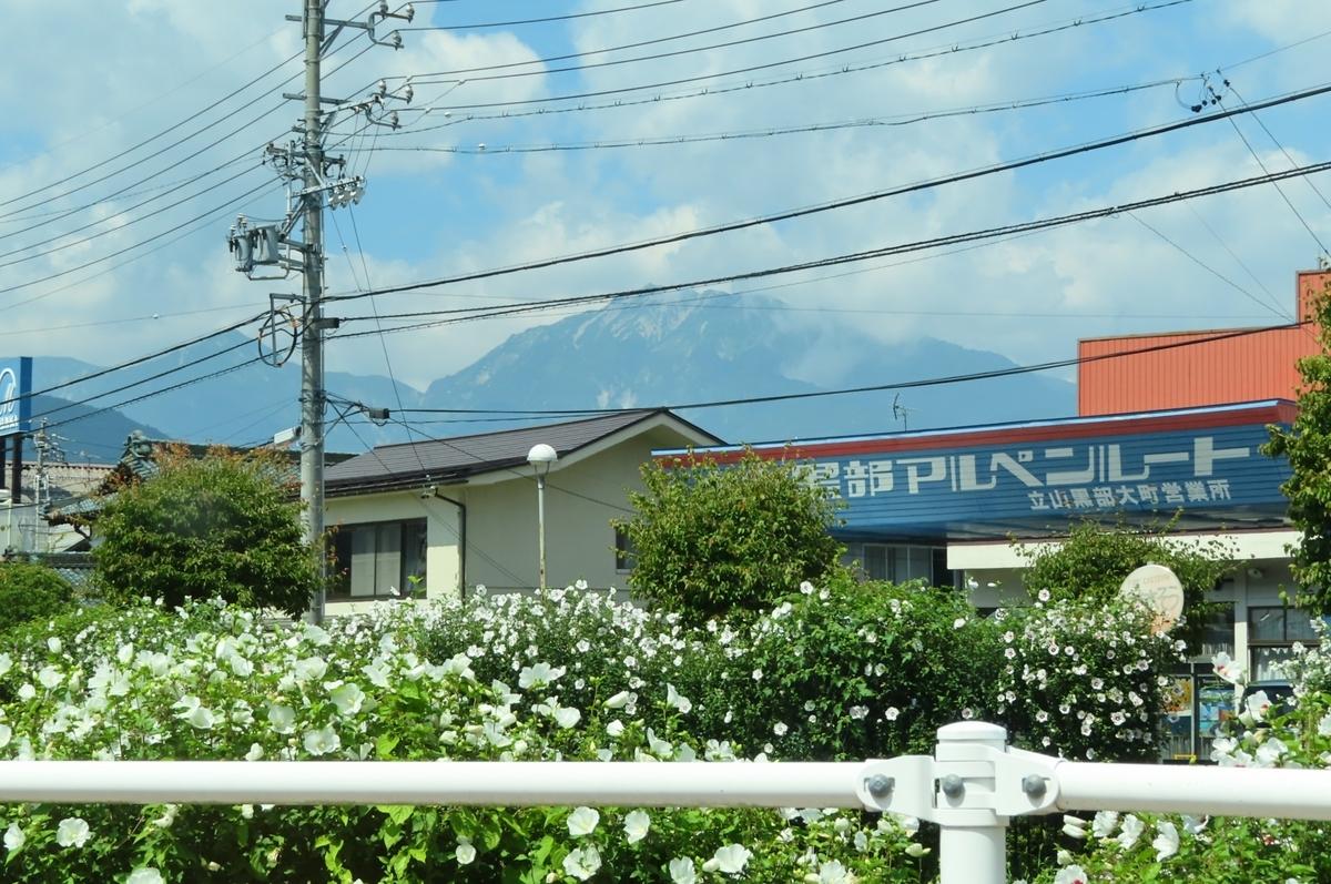f:id:katayoku_no_hito:20190825110215j:plain