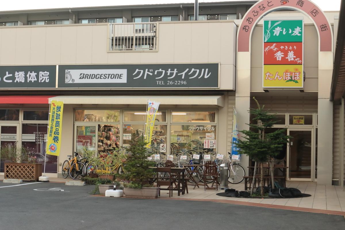 f:id:katayoku_no_hito:20191104160322j:plain