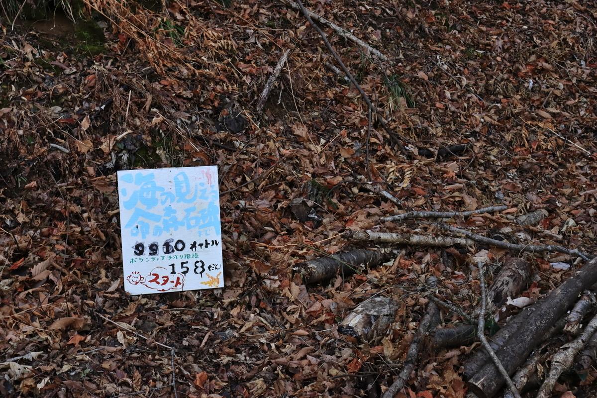 f:id:katayoku_no_hito:20200228234921j:plain