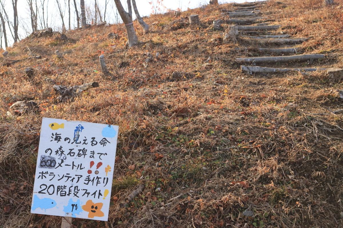 f:id:katayoku_no_hito:20200228235205j:plain