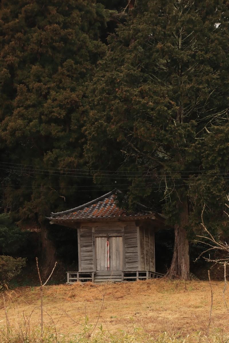 f:id:katayoku_no_hito:20200305005947j:plain