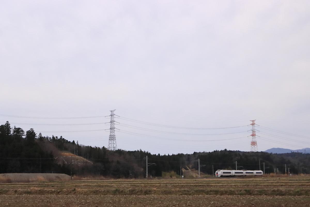 f:id:katayoku_no_hito:20200317225333j:plain