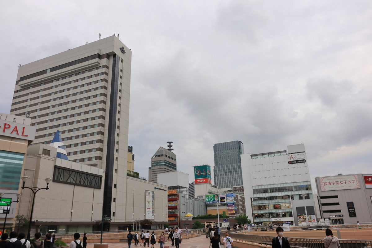 f:id:katayoku_no_hito:20200619170925j:plain