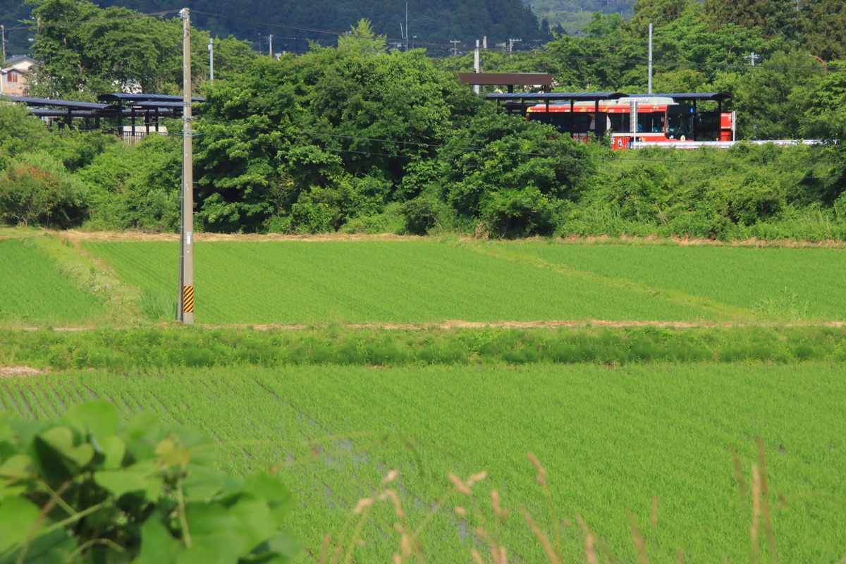 f:id:katayoku_no_hito:20200620081117j:plain
