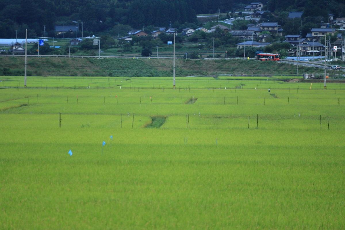 f:id:katayoku_no_hito:20200905173539j:plain