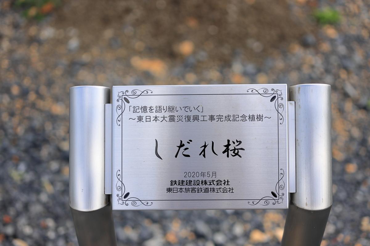 f:id:katayoku_no_hito:20200919114339j:plain