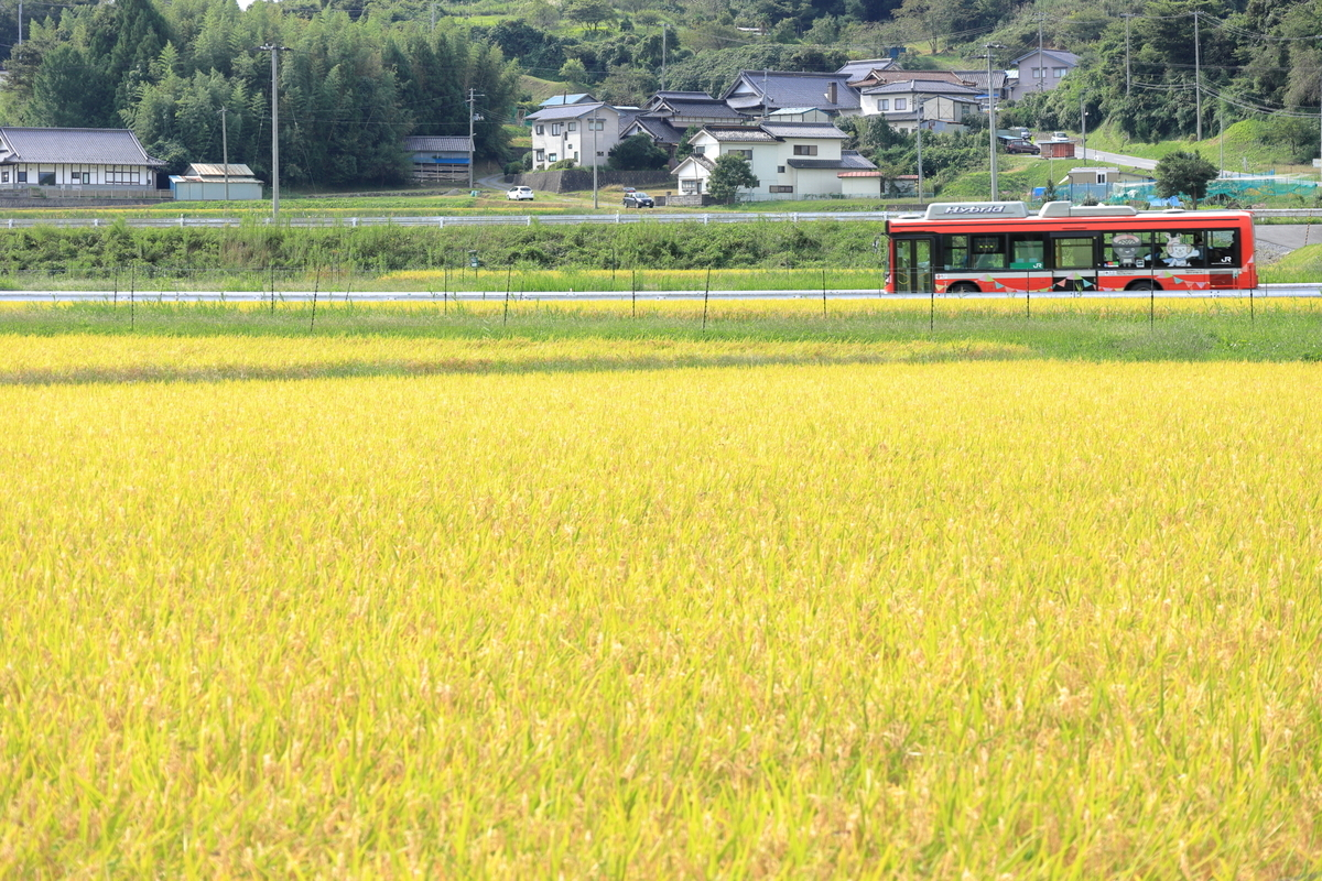 f:id:katayoku_no_hito:20200920092249j:plain