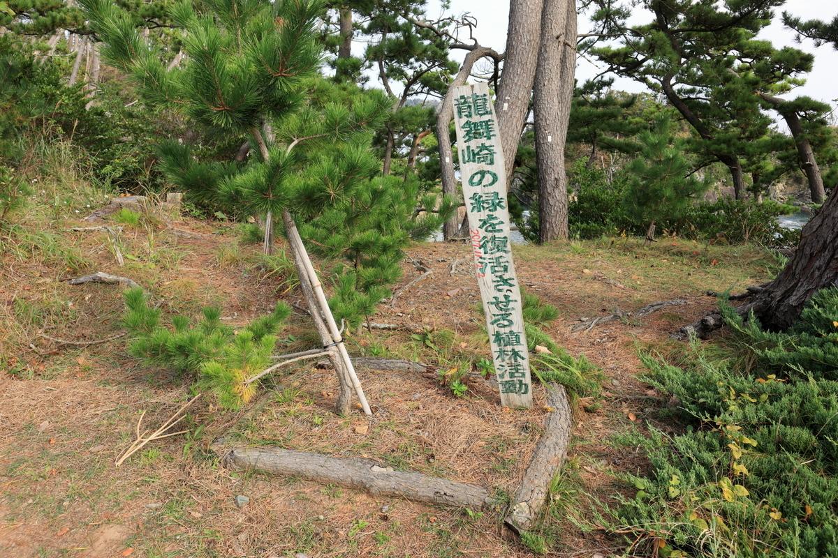 f:id:katayoku_no_hito:20201101115336j:plain